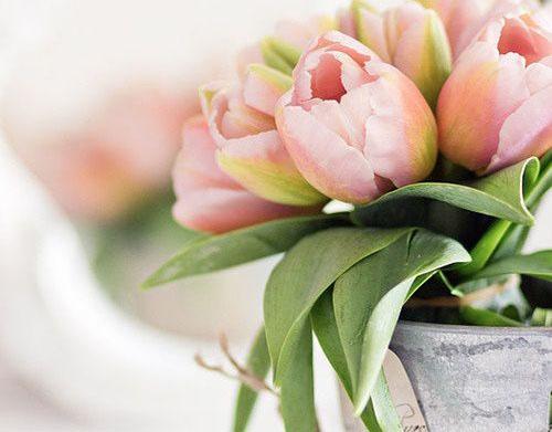 La decoración de primavera se caracteriza por llevar la naturaleza a nuestros hogares