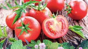 tomates saben menos a tomate